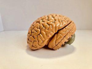 brain Injury attorney Fort Myers